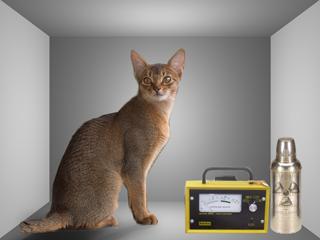 Une illustration de l'expérience dite du chat de Schrödinger